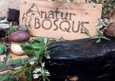 2019.11.10 - naturbosque festival sopas
