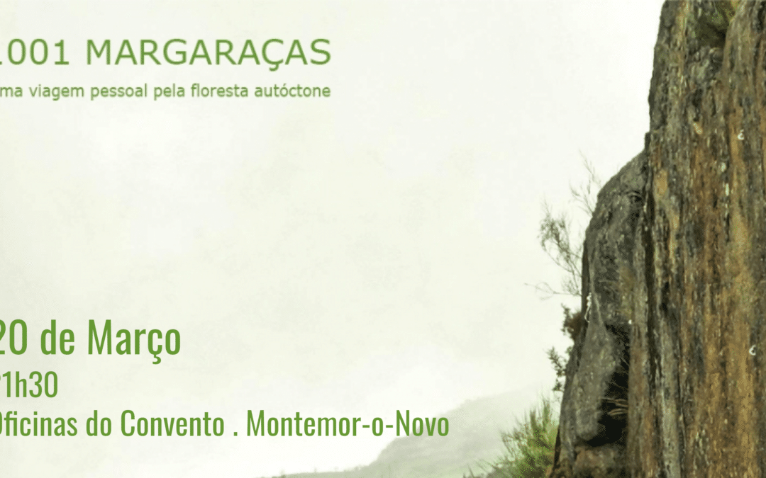 1001 Margaraças