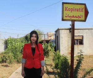 Mediya, Comissão de gestão do Centro de Cooperativas de Qamishlo